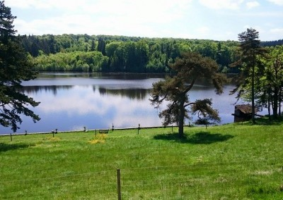 Estate Lake